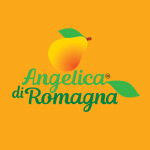 AB communication testimonianze Angelica Romagna