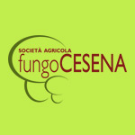 AB communication testimonianze FungoCesena